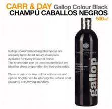 CARR & DAY CHAMPÔ CAV.PRETO 500ML.