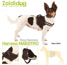 DOG HARNESS MAESTRO